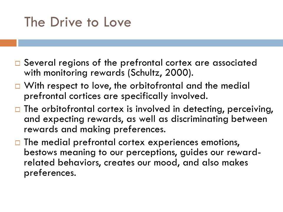 The Drive to Love  Several regions of the prefrontal cortex are associated with monitoring rewards (Schultz, 2000).