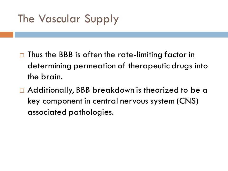 The Vascular Supply  Thus the BBB is often the rate-limiting factor in determining permeation of therapeutic drugs into the brain.