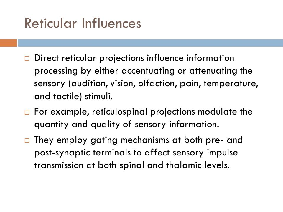 Reticular Influences  Direct reticular projections influence information processing by either accentuating or attenuating the sensory (audition, vision, olfaction, pain, temperature, and tactile) stimuli.