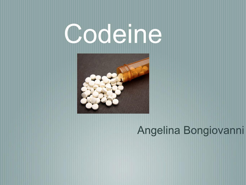 Codeine Angelina Bongiovanni