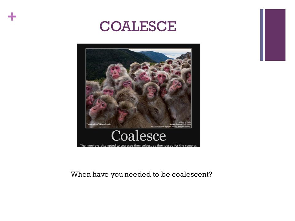 + COALESCE When have you needed to be coalescent?