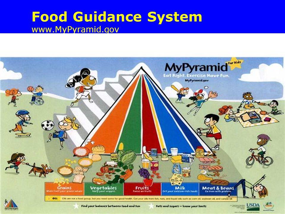 Food Guidance System www.MyPyramid.gov