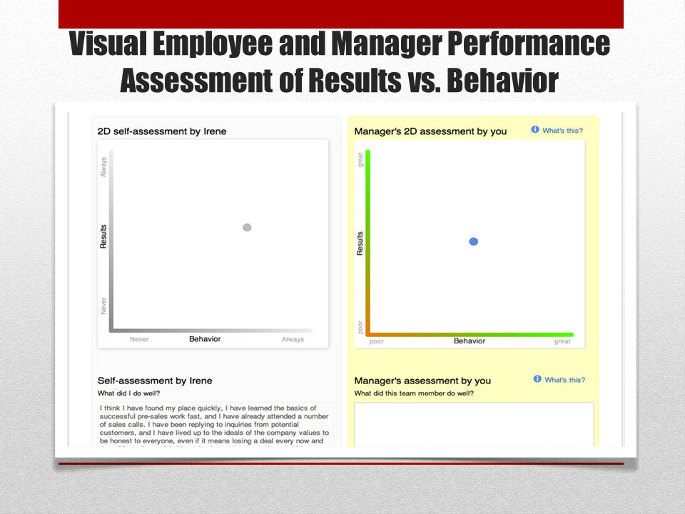 Visual Employee and Manager Performance Assessment of Results vs. Behavior
