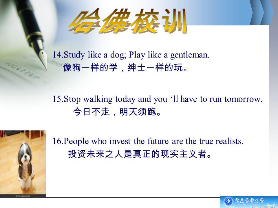 14.Study like a dog; Play like a gentleman.