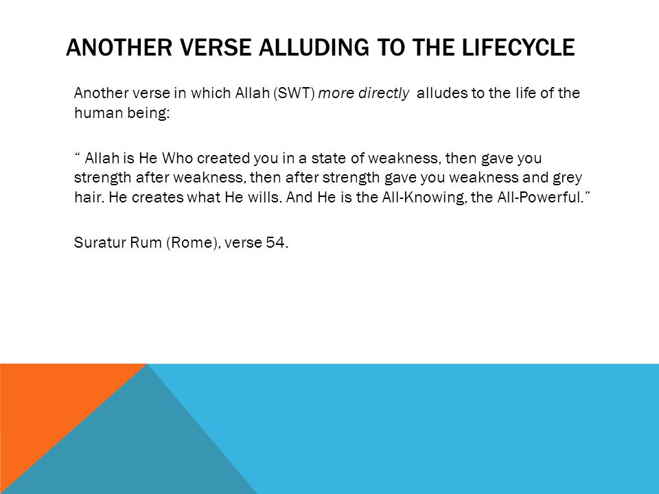 ANOTHER VERSE ALLUDING TO THE LIFECYCLE Another verse in which Allah (SWT) more directly alludes to the life of the human being: Allah is He Who created you in a state of weakness, then gave you strength after weakness, then after strength gave you weakness and grey hair.