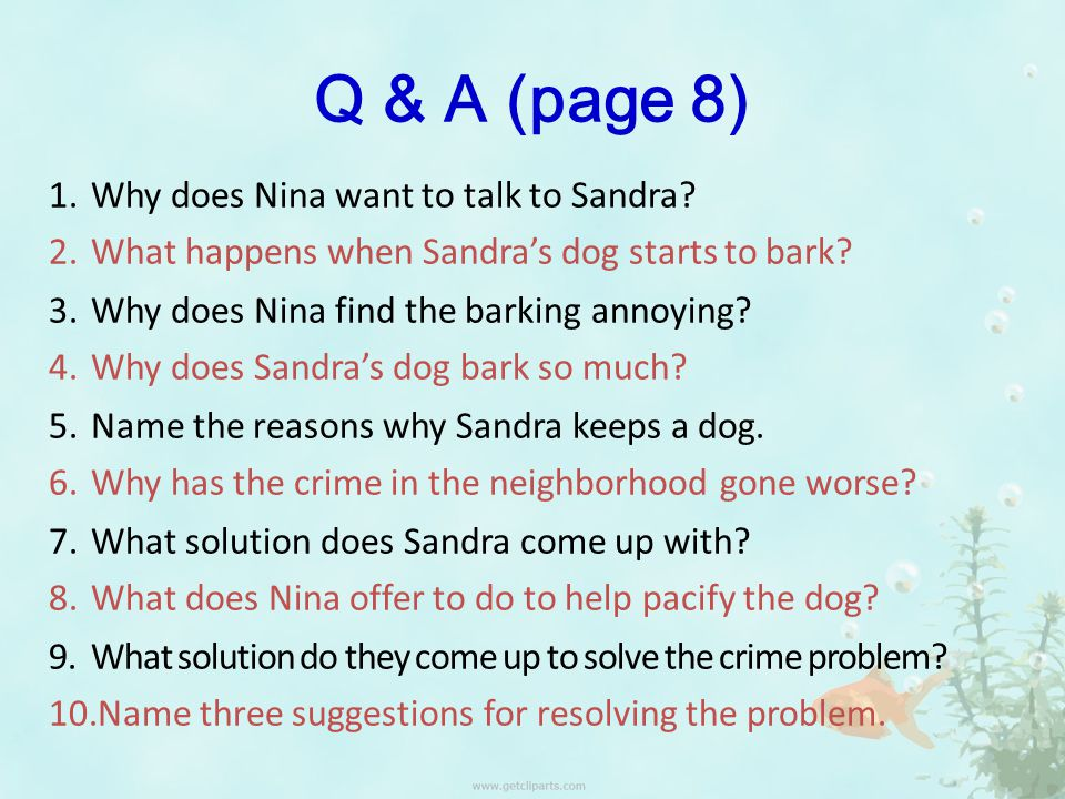 Q & A (page 8) 1.Why does Nina want to talk to Sandra.