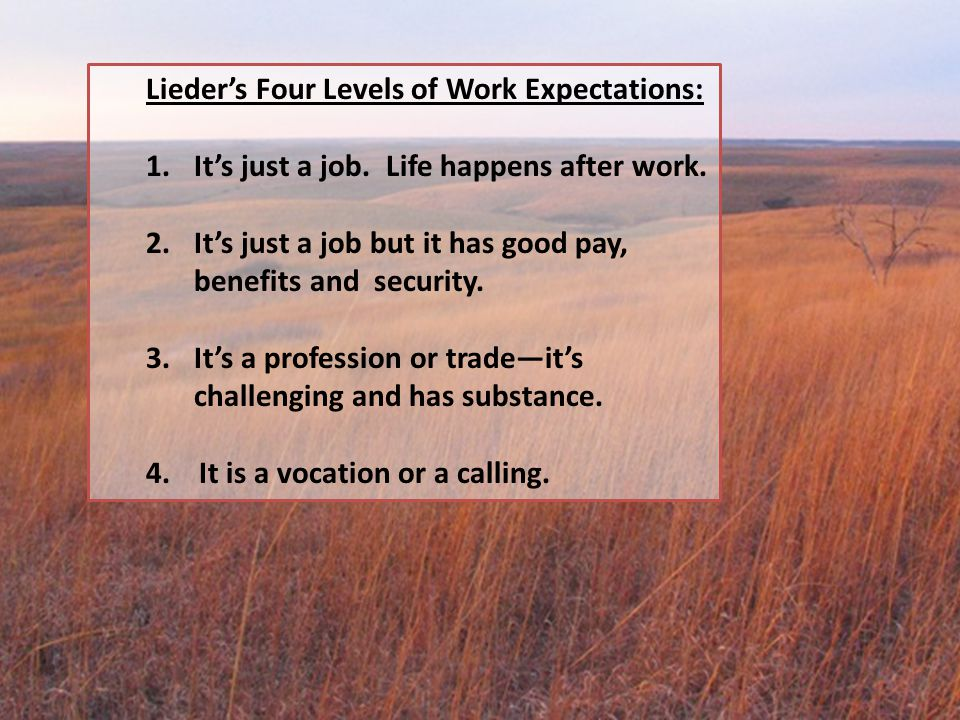 Lieder's Four Levels of Work Expectations: 1.It's just a job. Life happens after work. 2.It's just a job but it has good pay, benefits and security. 3