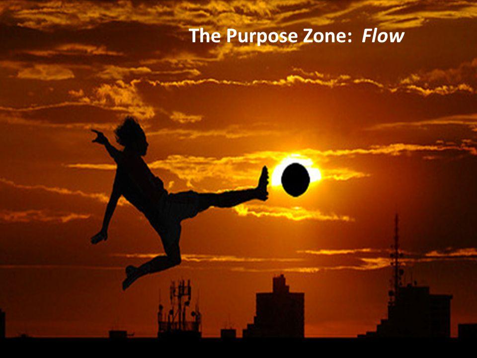 The Purpose Zone: Flow