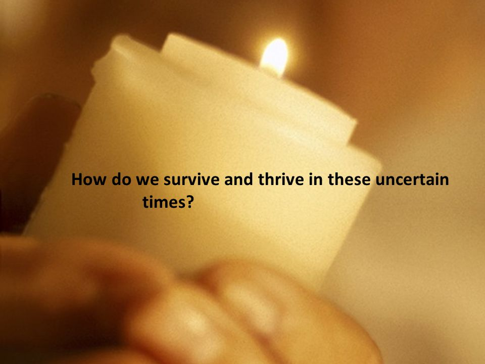 How do we survive and thrive in these uncertain times?