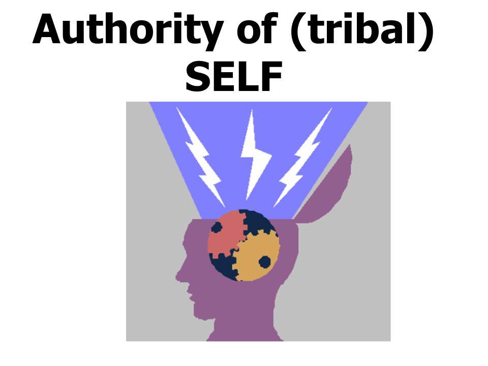 Authority of (tribal) SELF