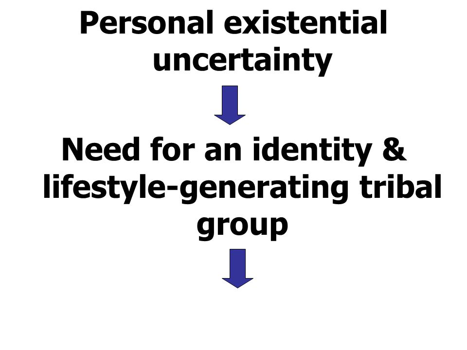 Personal existential uncertainty Need for an identity & lifestyle-generating tribal group
