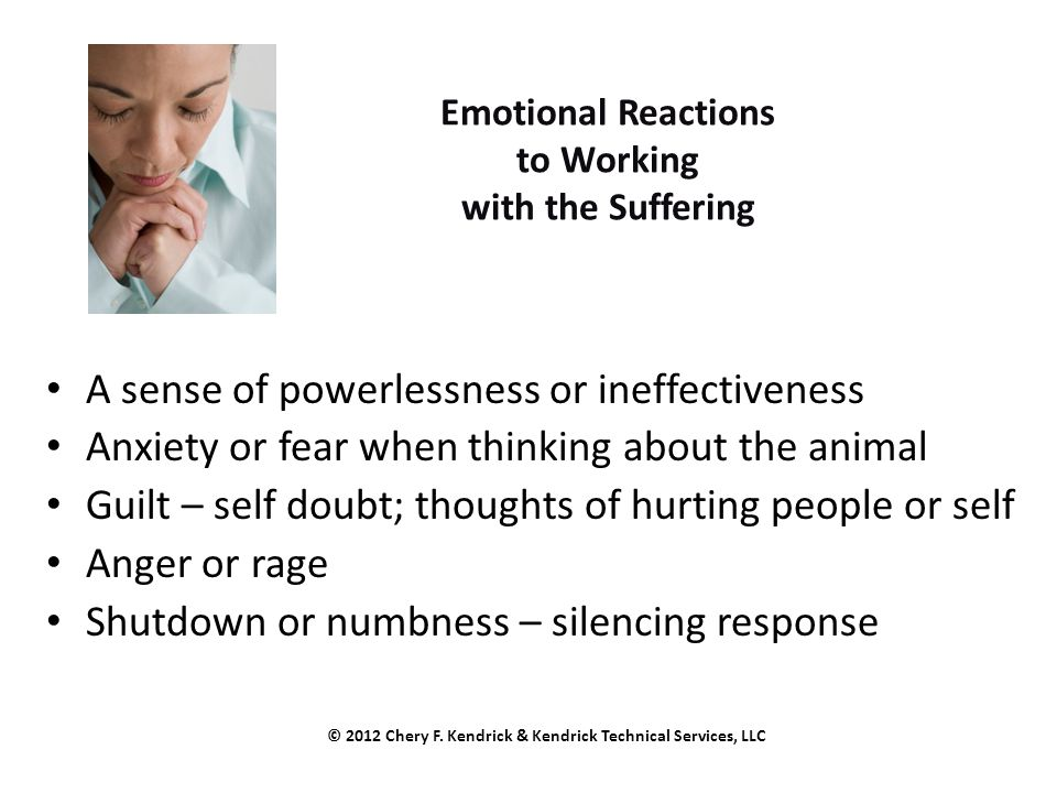 Emotional Reactions to Working with the Suffering A sense of powerlessness or ineffectiveness Anxiety or fear when thinking about the animal Guilt – self doubt; thoughts of hurting people or self Anger or rage Shutdown or numbness – silencing response © 2012 Chery F.