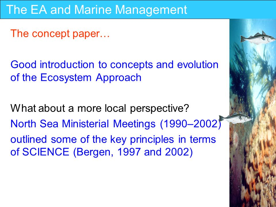 The EA and Marine Management The concept paper… Good introduction to concepts and evolution of the Ecosystem Approach What about a more local perspective.