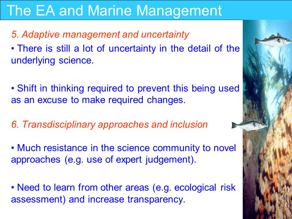 The EA and Marine Management 7.