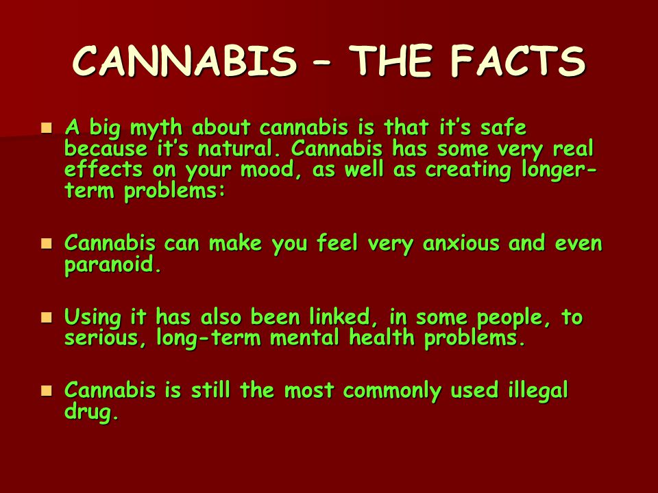 CANNABIS – THE FACTS A big myth about cannabis is that it's safe because it's natural.
