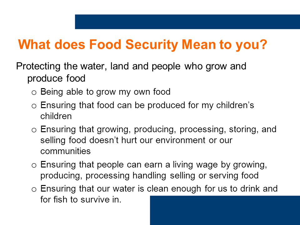 What does Food Security Mean to you.