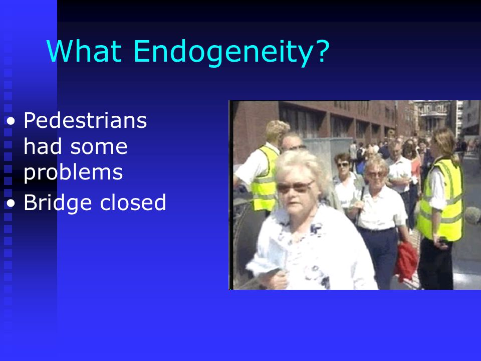 What Endogeneity? Pedestrians had some problems Bridge closed