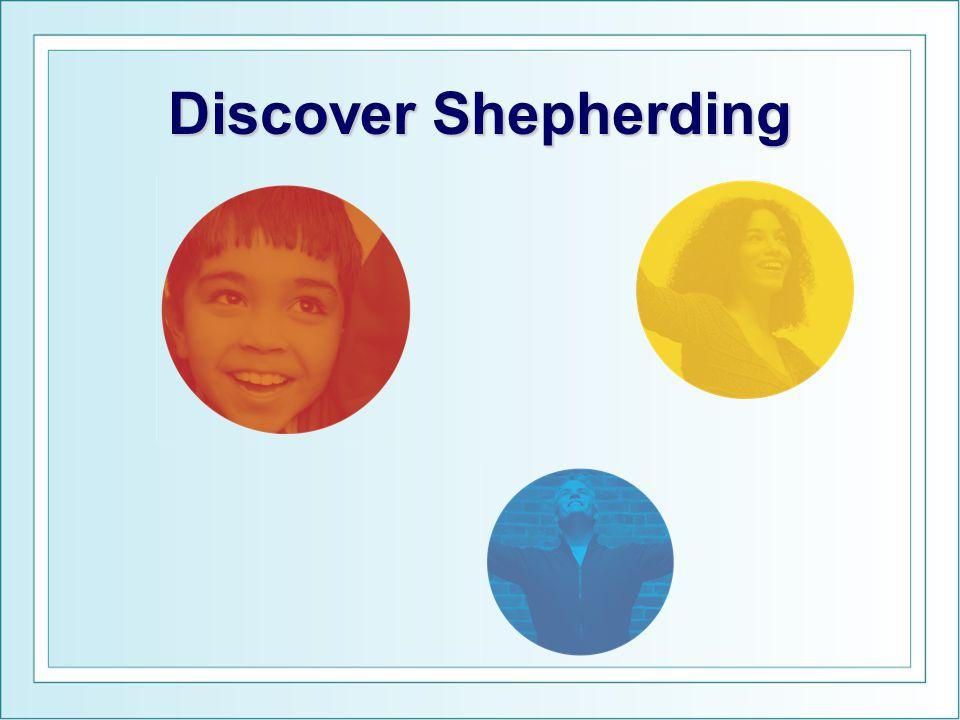Discover Shepherding