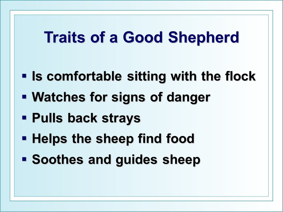 Traits of a Good Shepherd  Is comfortable sitting with the flock  Watches for signs of danger  Pulls back strays  Helps the sheep find food  Soot