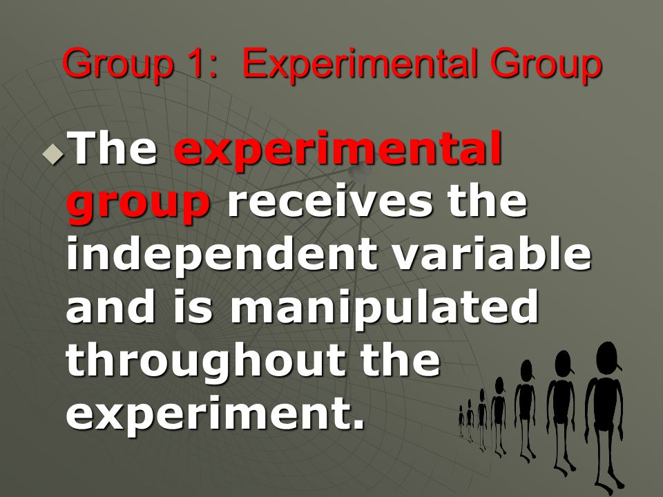 Group 1: Experimental Group  The experimental group receives the independent variable and is manipulated throughout the experiment.