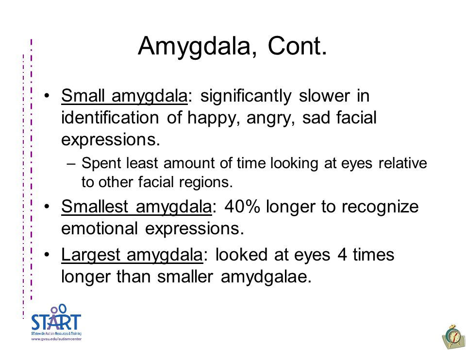 Amygdala, Cont. Small amygdala: significantly slower in identification of happy, angry, sad facial expressions. –Spent least amount of time looking at