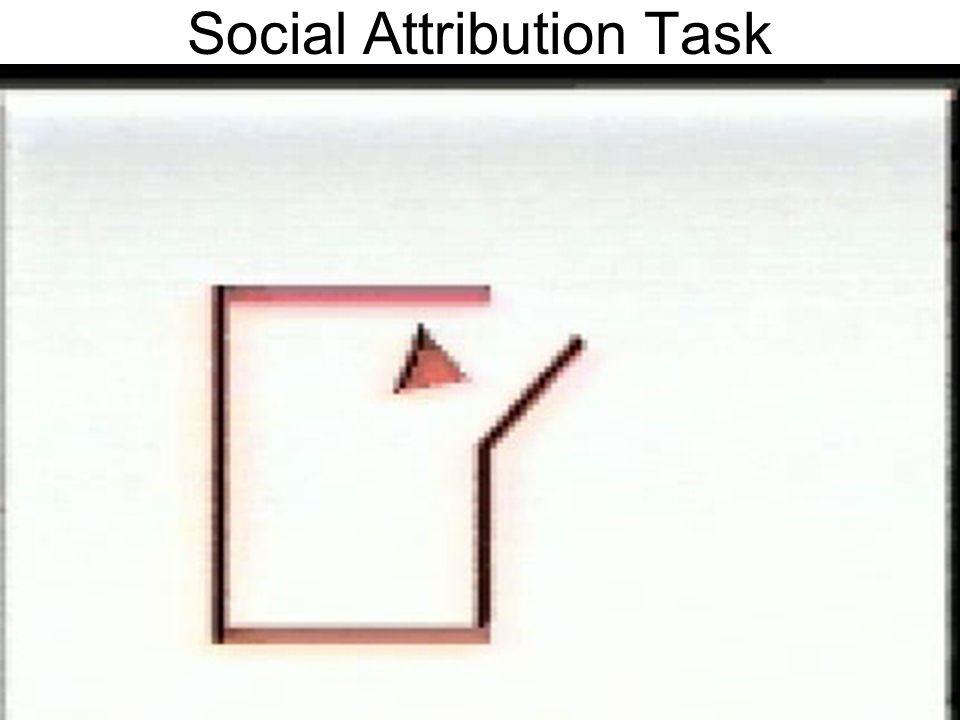 Social Attribution Task