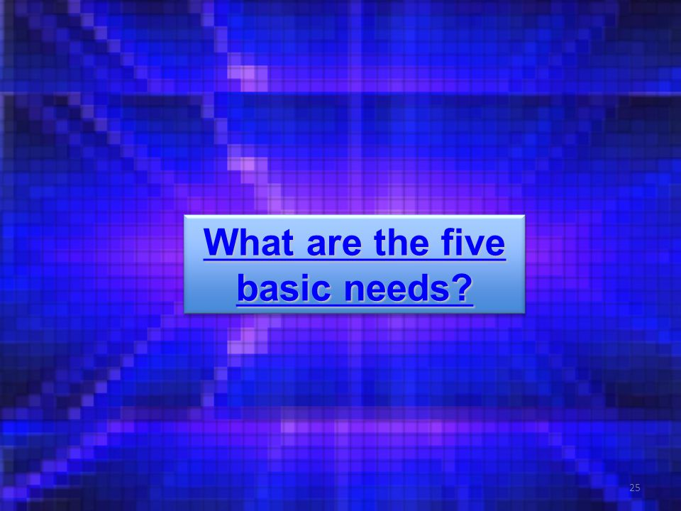 25 What are the five basic needs. What are the five basic needs.