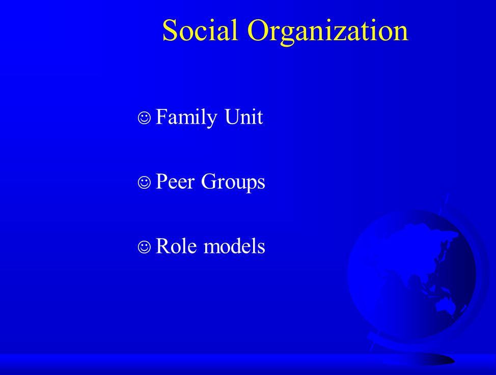 Social Organization J Family Unit J Peer Groups J Role models