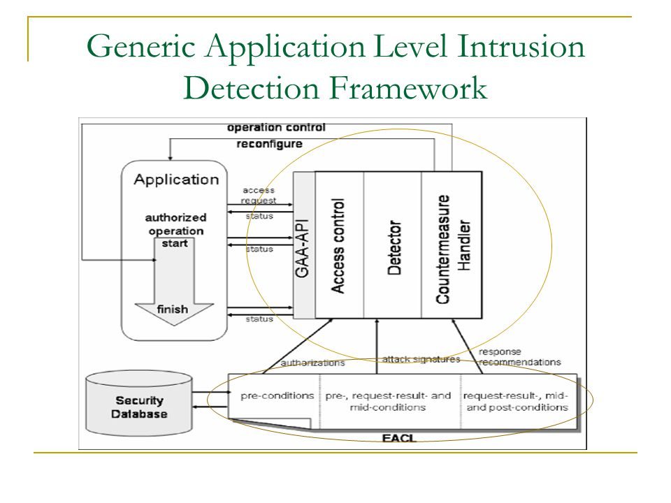 Generic Application Level Intrusion Detection Framework