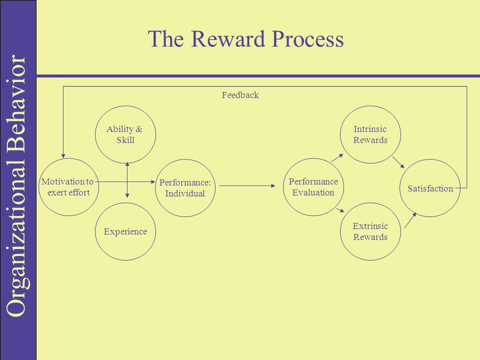 Organizational Behavior The Reward Process Motivation to exert effort Performance: Individual Experience Ability & Skill Performance Evaluation Satisfaction Extrinsic Rewards Intrinsic Rewards Feedback