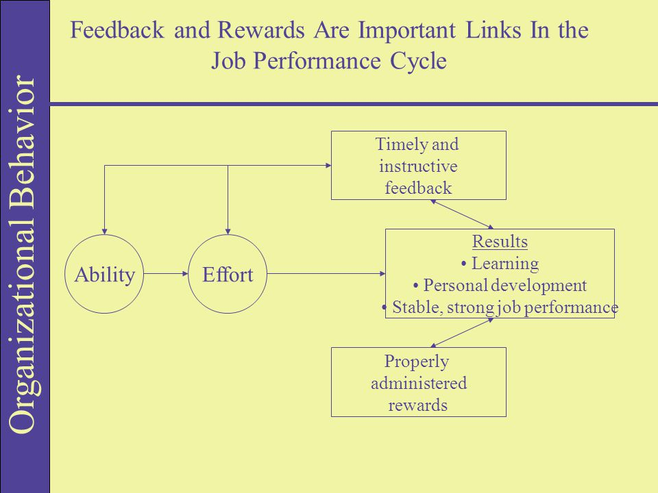 Organizational Behavior Feedback and Rewards Are Important Links In the Job Performance Cycle Results Learning Personal development Stable, strong job performance Properly administered rewards Timely and instructive feedback EffortAbility