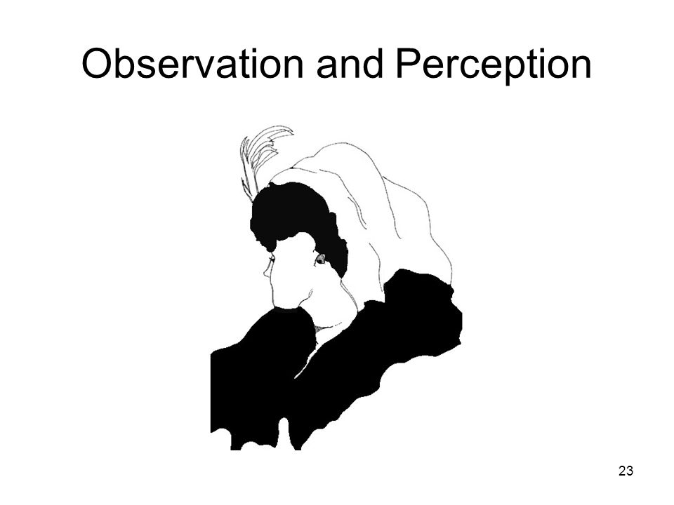 23 Observation and Perception