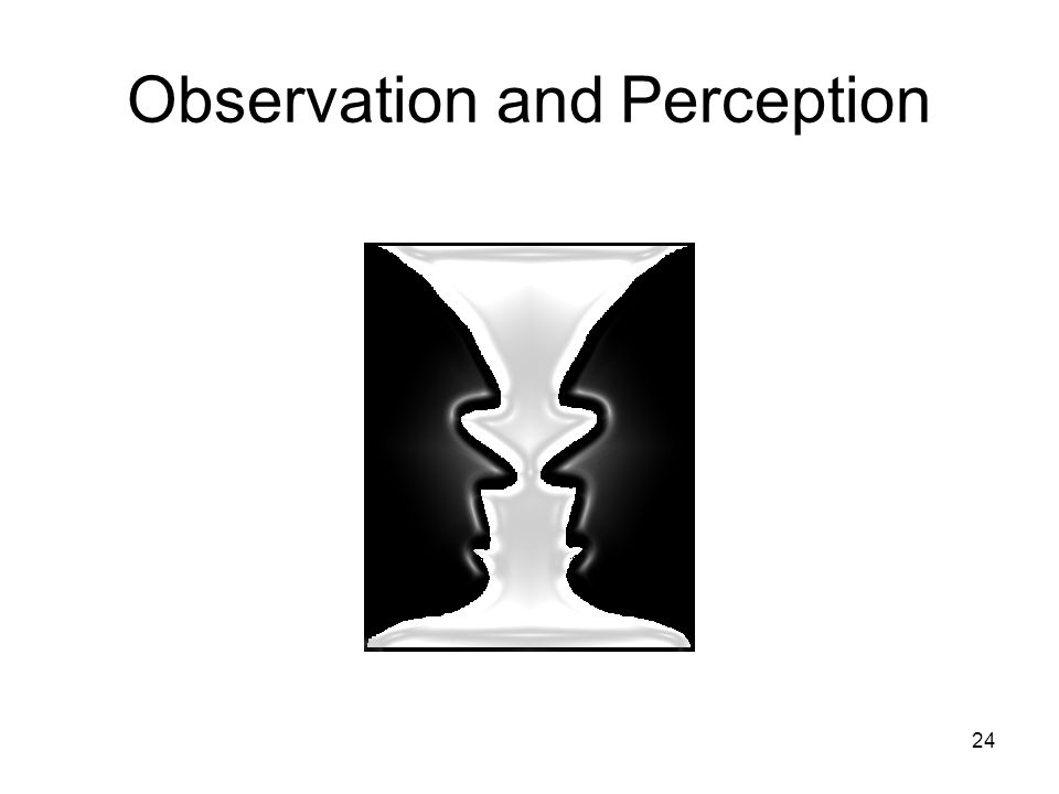 24 Observation and Perception