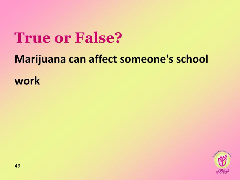 True or False Marijuana can affect someone s school work 43