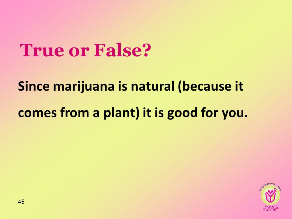 True or False? Since marijuana is natural (because it comes from a plant) it is good for you. 45