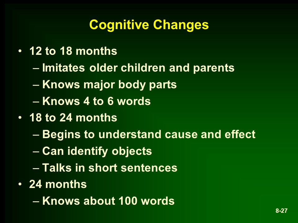 Cognitive Changes 12 to 18 months –Imitates older children and parents –Knows major body parts –Knows 4 to 6 words 18 to 24 months –Begins to understand cause and effect –Can identify objects –Talks in short sentences 24 months –Knows about 100 words 8-27