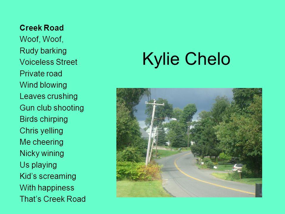 Kylie Chelo Creek Road Woof, Rudy barking Voiceless Street Private road Wind blowing Leaves crushing Gun club shooting Birds chirping Chris yelling Me