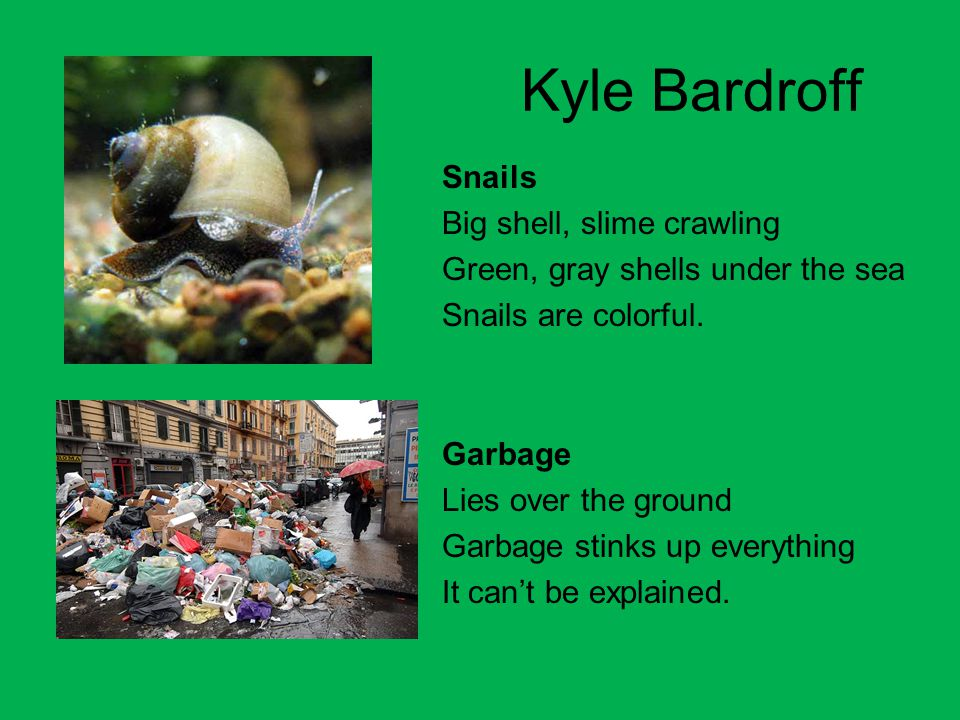 Kyle Bardroff Snails Big shell, slime crawling Green, gray shells under the sea Snails are colorful. Garbage Lies over the ground Garbage stinks up ev