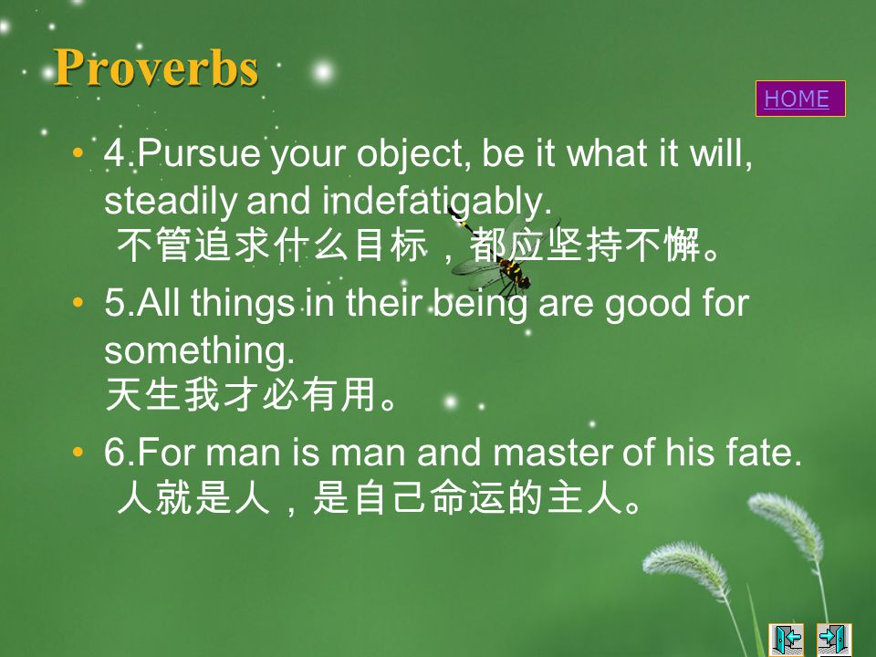 Proverbs 4.Pursue your object, be it what it will, steadily and indefatigably.