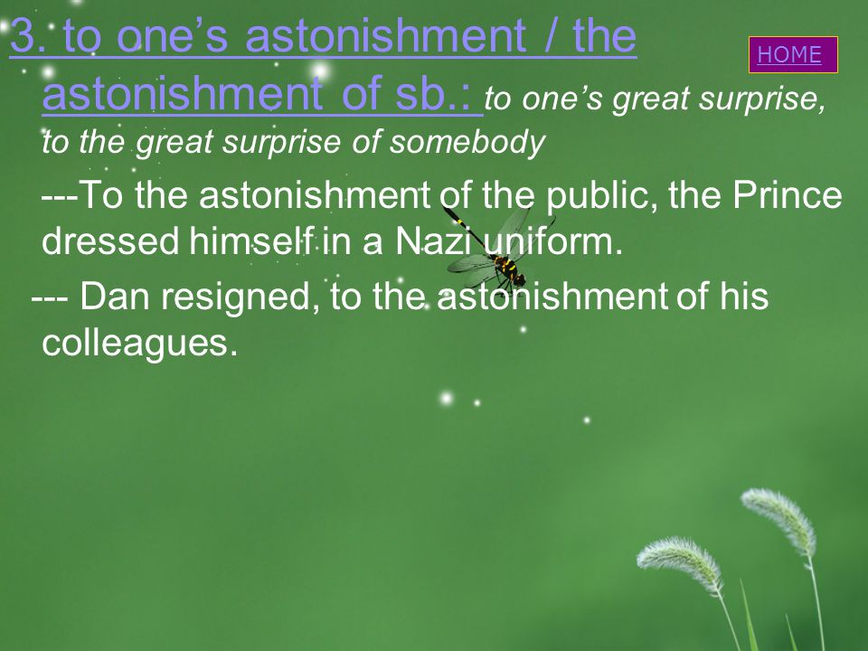 3. to one's astonishment / the astonishment of sb.: 3.