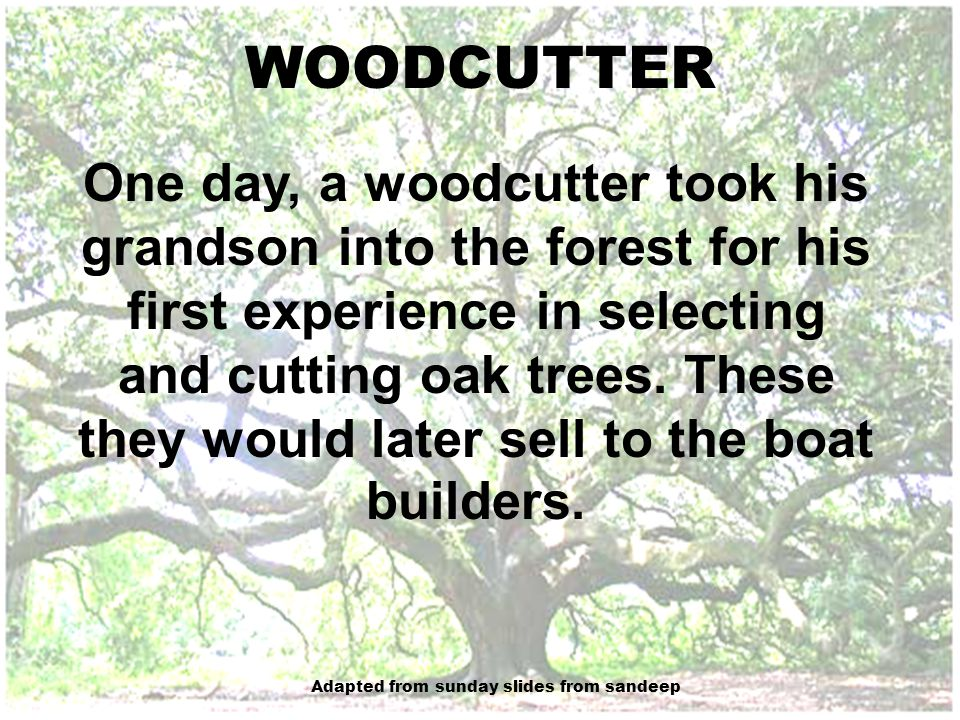 As they walked along, the woodcutter explained that the purpose of each tree is contained in its natural shape: some are straight for planks, some have the proper curves for the ribs of a boat, and some are tall for masts.