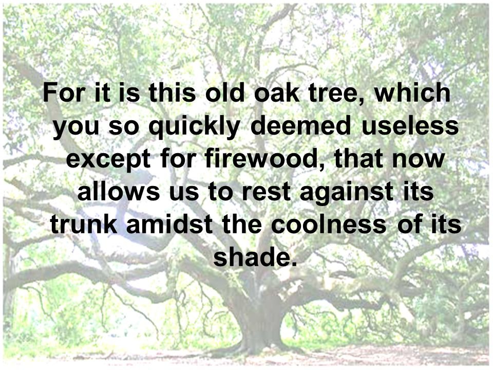 For it is this old oak tree, which you so quickly deemed useless except for firewood, that now allows us to rest against its trunk amidst the coolness