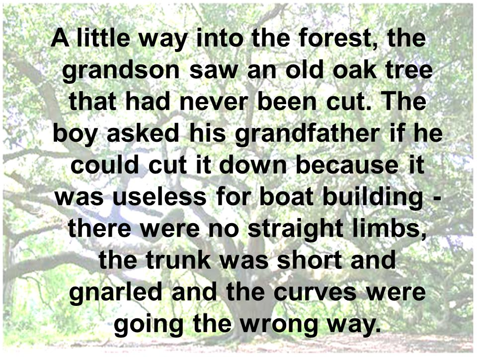 A little way into the forest, the grandson saw an old oak tree that had never been cut. The boy asked his grandfather if he could cut it down because