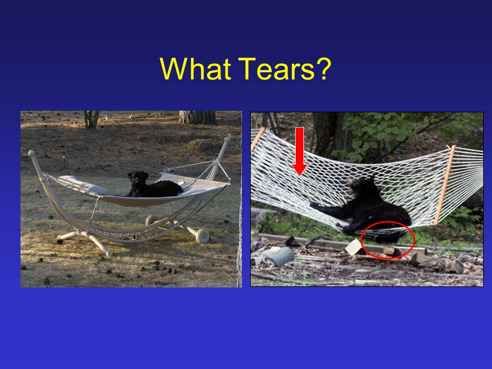 What Tears?