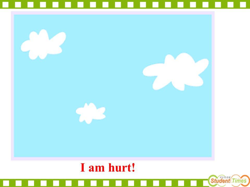 I am hurt!