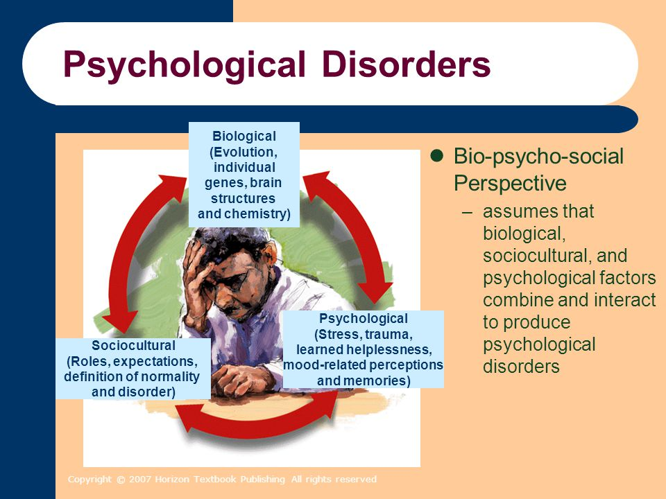 Copyright © 2007 Horizon Textbook Publishing All rights reserved Psychological Disorders Bio-psycho-social Perspective –assumes that biological, socio