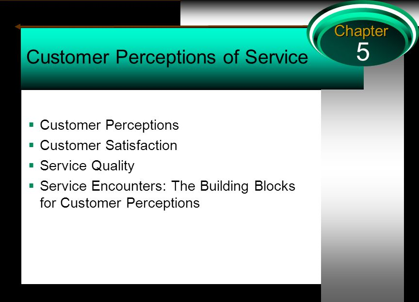 5 Chapter Customer Perceptions of Service  Customer Perceptions  Customer Satisfaction  Service Quality  Service Encounters: The Building Blocks for Customer Perceptions