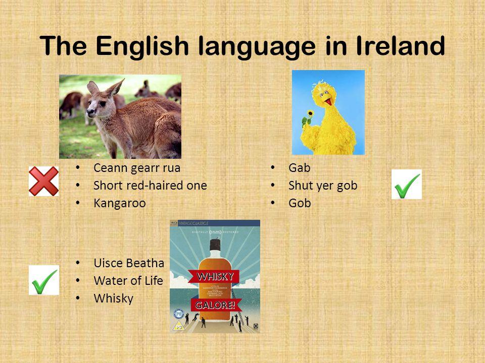 The English language in Ireland Ceann gearr rua Short red-haired one Kangaroo Gab Shut yer gob Gob Uisce Beatha Water of Life Whisky