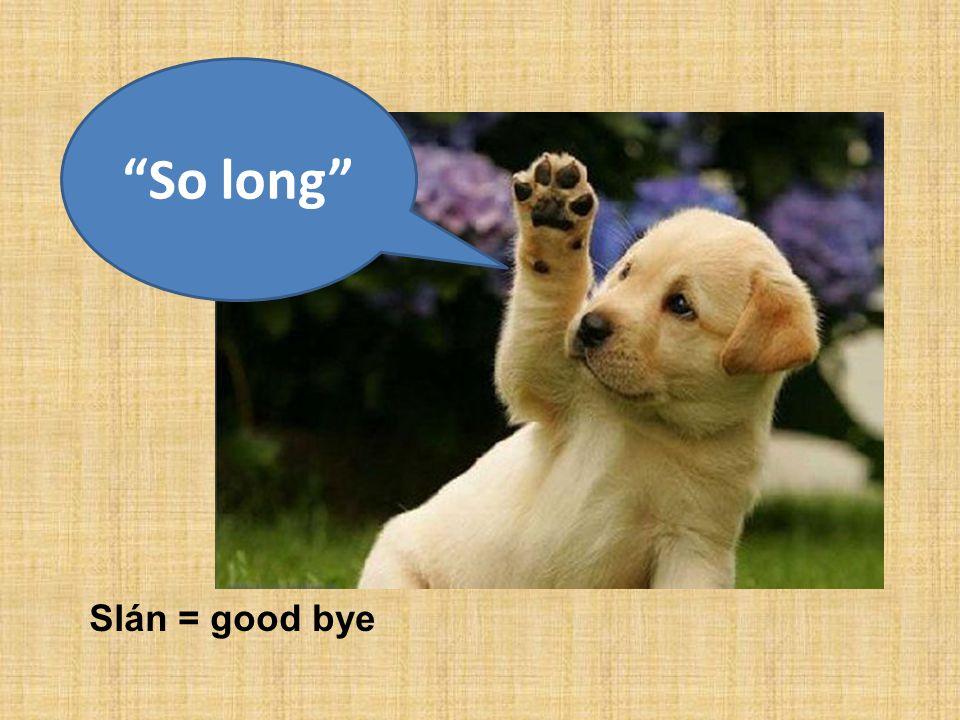 Slán = good bye So long