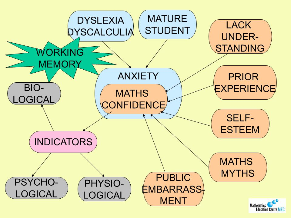 ANXIETY MATHS CONFIDENCE DYSLEXIA DYSCALCULIA MATURE STUDENT INDICATORS LACK UNDER- STANDING PHYSIO- LOGICAL PSYCHO- LOGICAL BIO- LOGICAL WORKING MEMORY PUBLIC EMBARRASS- MENT MATHS MYTHS SELF- ESTEEM PRIOR EXPERIENCE